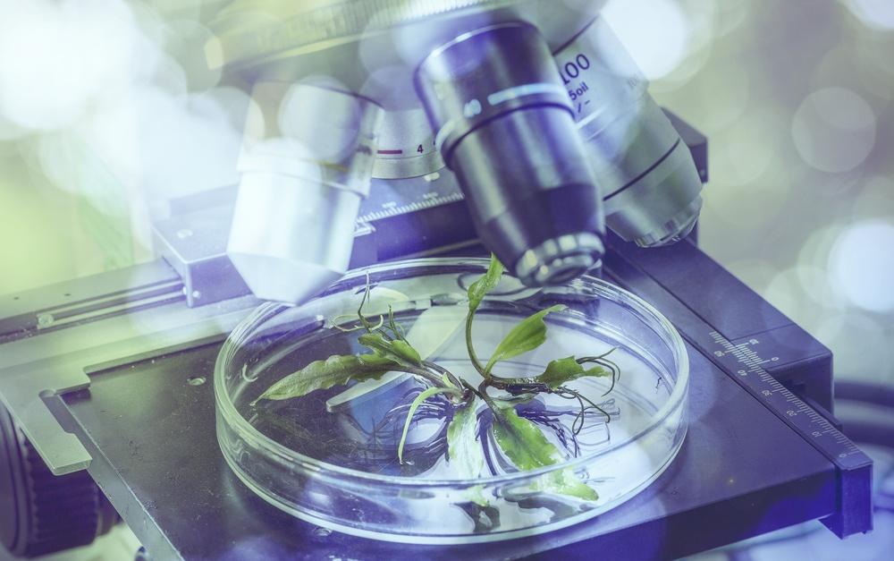 ciências biologicas